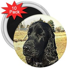 Black English Cocker Spaniel  3  Magnets (10 pack)