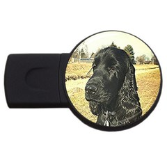 Black English Cocker Spaniel  USB Flash Drive Round (2 GB)