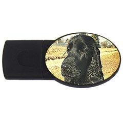 Black English Cocker Spaniel  USB Flash Drive Oval (2 GB)
