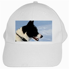 Karelian Bear Dog White Cap