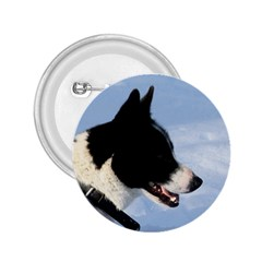 Karelian Bear Dog 2.25  Buttons