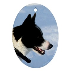 Karelian Bear Dog Ornament (Oval)