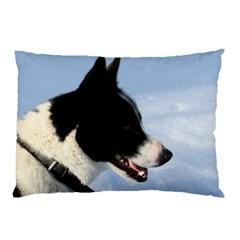 Karelian Bear Dog Pillow Case