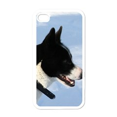 Karelian Bear Dog Apple iPhone 4 Case (White)
