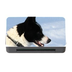 Karelian Bear Dog Memory Card Reader with CF