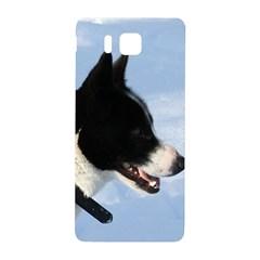 Karelian Bear Dog Samsung Galaxy Alpha Hardshell Back Case