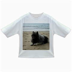 Keeshond On Beach  Infant/Toddler T-Shirts