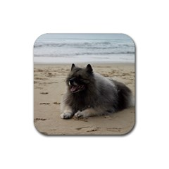 Keeshond On Beach  Rubber Square Coaster (4 pack)