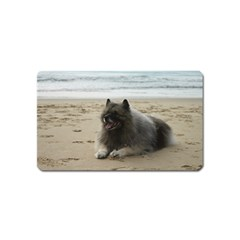 Keeshond On Beach  Magnet (Name Card)