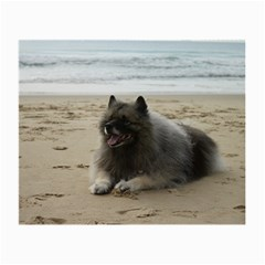 Keeshond On Beach  Small Glasses Cloth
