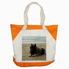 Keeshond On Beach  Accent Tote Bag