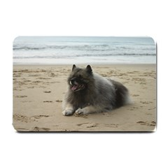 Keeshond On Beach  Small Doormat
