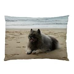 Keeshond On Beach  Pillow Case