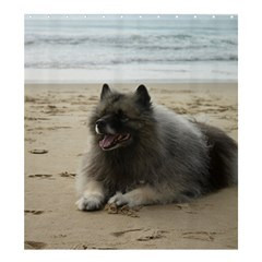 Keeshond On Beach  Shower Curtain 66  x 72  (Large)