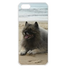 Keeshond On Beach  Apple iPhone 5 Seamless Case (White)