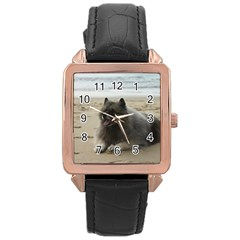 Keeshond On Beach  Rose Gold Leather Watch