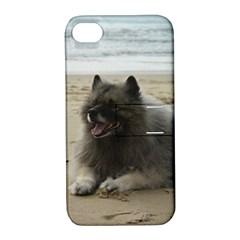 Keeshond On Beach  Apple iPhone 4/4S Hardshell Case with Stand