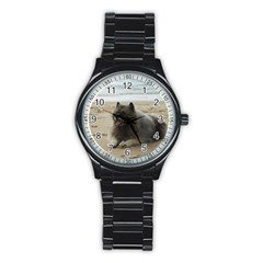 Keeshond On Beach  Stainless Steel Round Watch