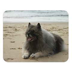 Keeshond On Beach  Double Sided Flano Blanket (Large)