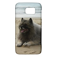 Keeshond On Beach  Galaxy S6