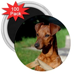 Min Pin On Gate  3  Magnets (100 pack)