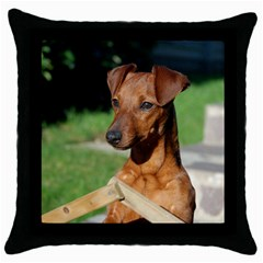Min Pin On Gate  Throw Pillow Case (Black)
