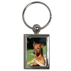Min Pin On Gate  Key Chains (Rectangle)