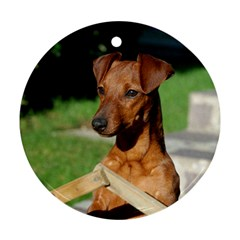 Min Pin On Gate  Round Ornament (Two Sides)