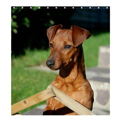 Min Pin On Gate  Shower Curtain 66  x 72  (Large)