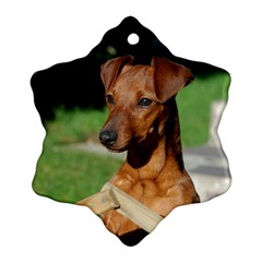 Min Pin On Gate  Snowflake Ornament (2-Side)