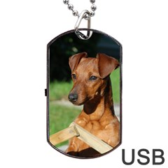 Min Pin On Gate  Dog Tag USB Flash (Two Sides)