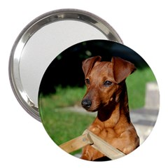 Min Pin On Gate  3  Handbag Mirrors