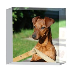 Min Pin On Gate  5  x 5  Acrylic Photo Blocks
