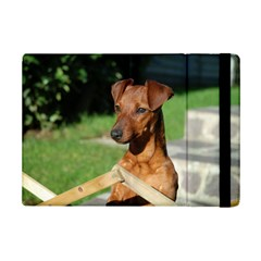 Min Pin On Gate  iPad Mini 2 Flip Cases