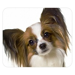 Papillon Double Sided Flano Blanket (Small)