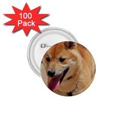 4 Shiba Inu 1.75  Buttons (100 pack)