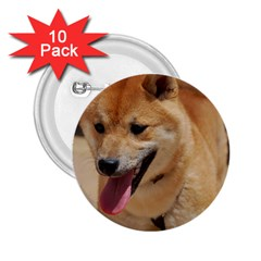 4 Shiba Inu 2.25  Buttons (10 pack)