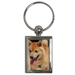 4 Shiba Inu Key Chains (Rectangle)