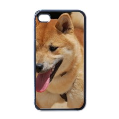 4 Shiba Inu Apple iPhone 4 Case (Black)