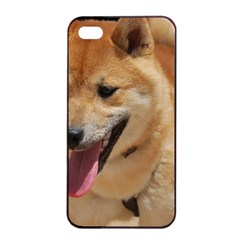 4 Shiba Inu Apple iPhone 4/4s Seamless Case (Black)
