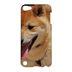 4 Shiba Inu Apple iPod Touch 5 Hardshell Case