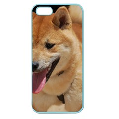 4 Shiba Inu Apple Seamless iPhone 5 Case (Color)