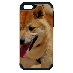 4 Shiba Inu Apple iPhone 5 Hardshell Case (PC+Silicone)