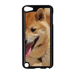 4 Shiba Inu Apple iPod Touch 5 Case (Black)