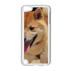 4 Shiba Inu Apple iPod Touch 5 Case (White)