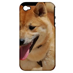 4 Shiba Inu Apple iPhone 4/4S Hardshell Case (PC+Silicone)