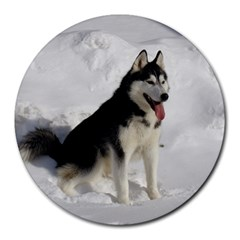 Siberian Husky Sitting in snow Round Mousepads