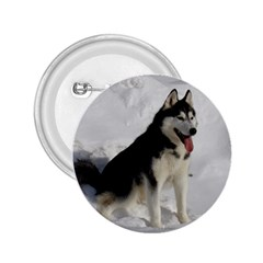 Siberian Husky Sitting in snow 2.25  Buttons