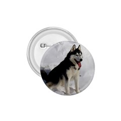Siberian Husky Sitting in snow 1.75  Buttons