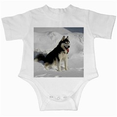 Siberian Husky Sitting in snow Infant Creepers
